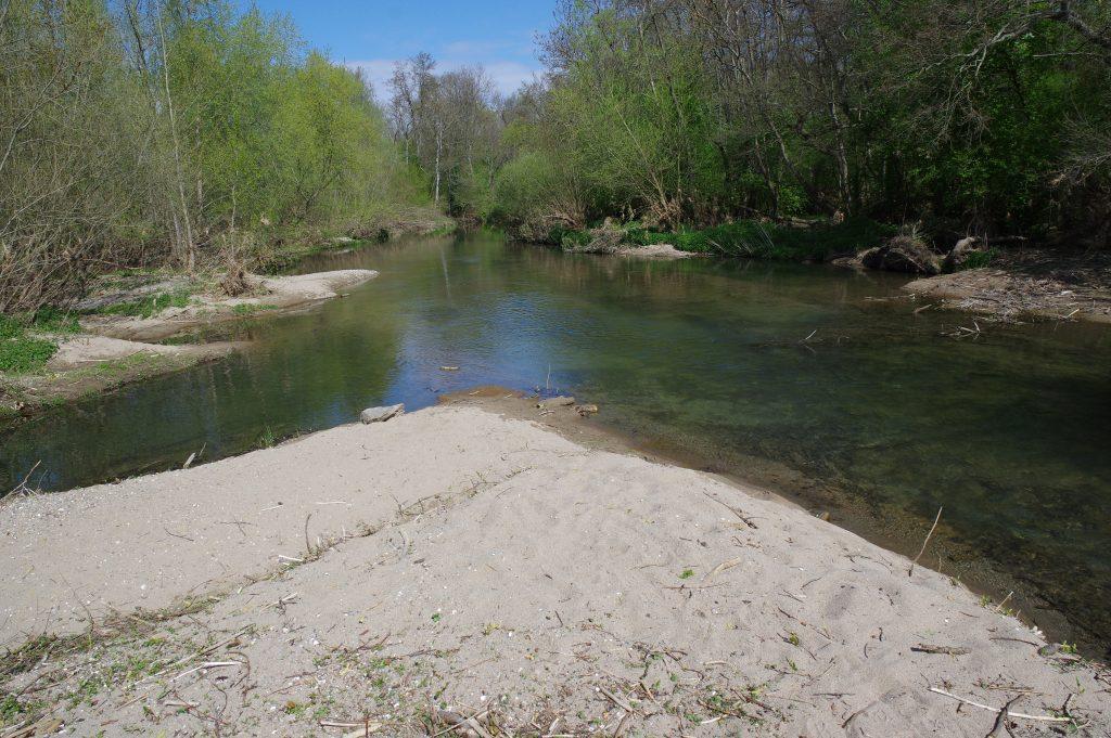 Eine Sandbank im Altrheingewässer von Taubergießen