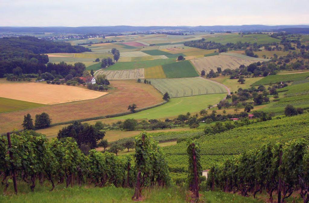 Die Landschaft unterhalb vom Derdinger Horn